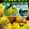 国産メイヤーレモン