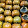 シャロンフルーツ = 柿?