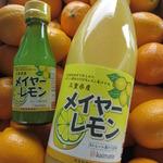 コラム「メイヤーレモンの果汁」のサムネイル画像