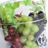 3色ブドウの食べ比べ
