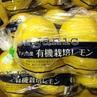 有機栽培レモンが入荷