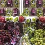 コラム「「アメリカ葡萄がおいしい!」」のサムネイル画像