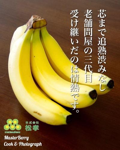 IMG_3934.JPG