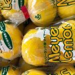 コラム「丸かじり!メイヤーレモン」のサムネイル画像