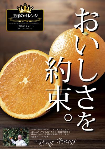 王様のオレンジ A4_orange.jpg