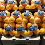マツコーチャンネル「『王様のオレンジ』はじまりました!」のサムネイル画像