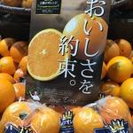 コラム「「おいしさを約束」するオレンジ」のサムネイル画像