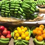 コラム「バナナのもぎ取り、イベントでぜひ!」のサムネイル画像