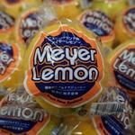 コラム「美味しいレモン、メイヤー!」のサムネイル画像