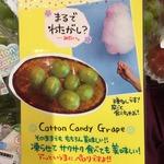 コラム「ぶどうを凍らせてアイス売場で!?」のサムネイル画像