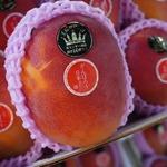 コラム「フルーツの『王様』が勢揃い!!!」のサムネイル画像
