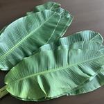 コラム「バナナの葉、あります!」のサムネイル画像